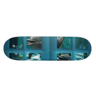 Funny dolphins custom skate board