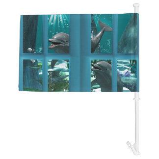 Funny dolphins car flag