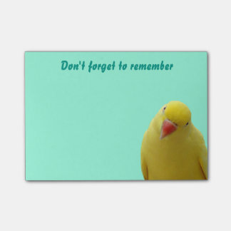 "Funny ""Don't Forget"" Bird Sticky Notes"