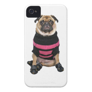 Funny dressed up pug dog with sweater and boots iPhone 4 cover