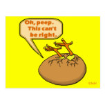 Funny Easter Chick in Egg Postcard