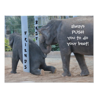 Funny Elephant Poster, Best Friends! Poster
