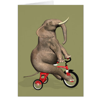 Funny Elephant Riding A Tricycle Card