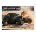 Funny Elephany birthday card, No more nutella!!
