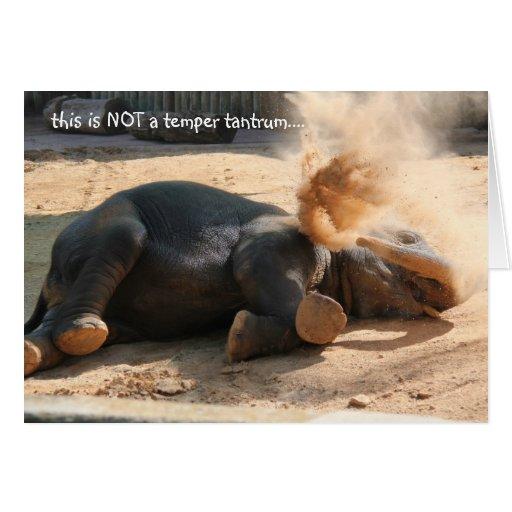 Funny Elephany birthday card, No more nutella!! Greeting Card