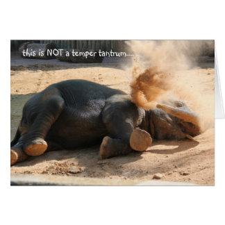 Funny Elephany birthday card, No more nutella!! Card