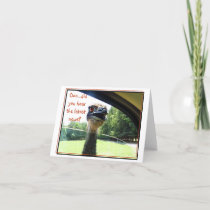 Funny Emu Latest News Gossip Card