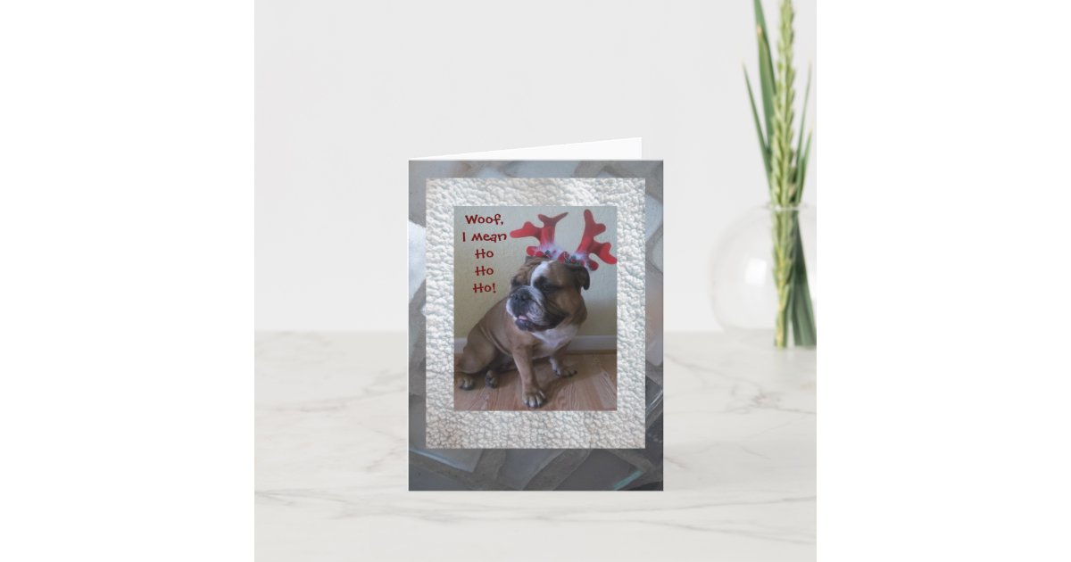 Funny English bulldog Christmas card! Holiday Card | Zazzle.com