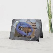 Funny English Bulldog Christmas Cards! Holiday Card