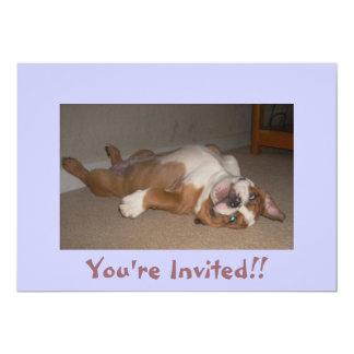Funny English Bulldog Invitations