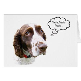 Funny English Springer Spaniel Treat Card