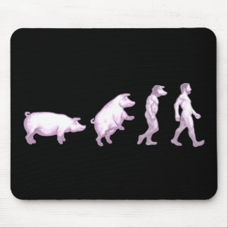 Funny evolution of pigs mouse mats