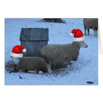 Funny Ewe Sheep Christmas Card