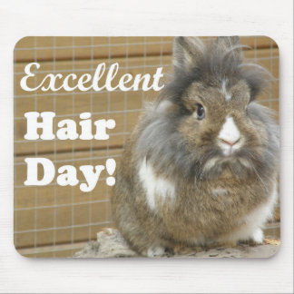 "Funny ""Excellent Hair Day"" for Rabbit. Mouse Pad"