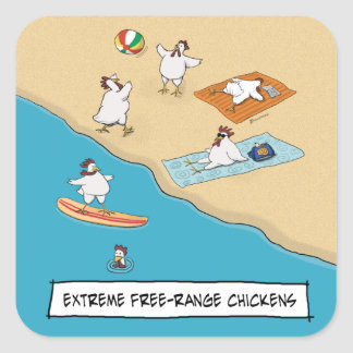 Funny Extreme Free-Range Chickens Square Sticker