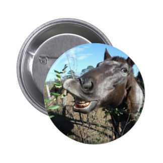 Funny Face brown horse Pins