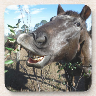Funny Face brown horse Beverage Coasters