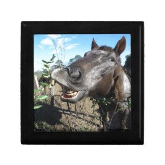 Funny Face brown horse Keepsake Box
