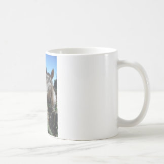 Funny Face brown horse Coffee Mugs
