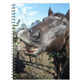 Funny Face brown horse Spiral Note Book
