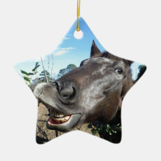 Funny Face brown horse Ornaments
