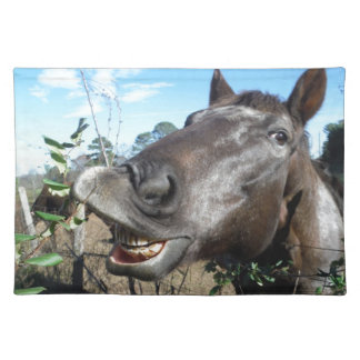 Funny Face brown horse Placemats