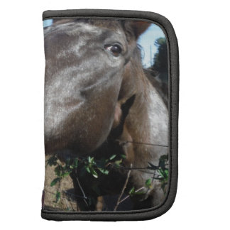 Funny Face brown horse Organizers