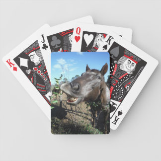 Funny Face brown horse Card Deck