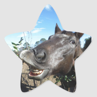 Funny Face brown horse Star Sticker