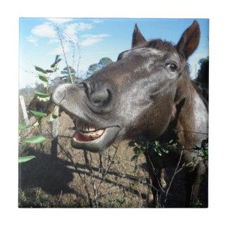 Funny Face brown horse Ceramic Tile