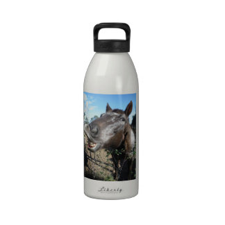 Funny Face brown horse Reusable Water Bottles