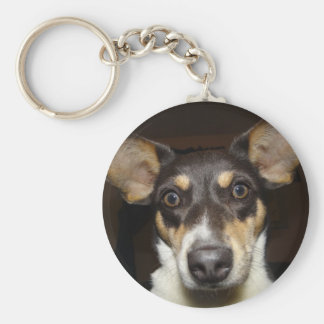 Funny Faced Dog Basic Round Button Keychain