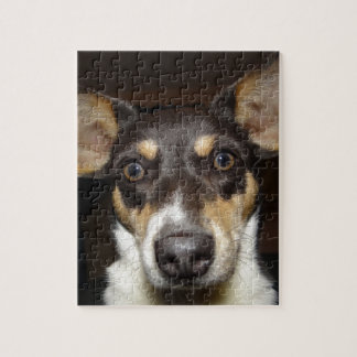 Funny Faced Dog Jigsaw Puzzles