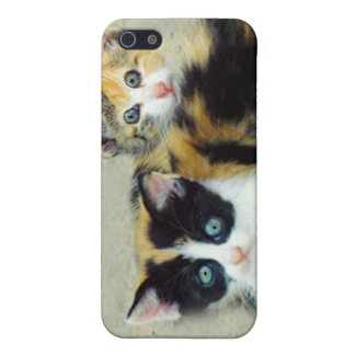 Funny Faced Kittens Cover For iPhone SE/5/5s