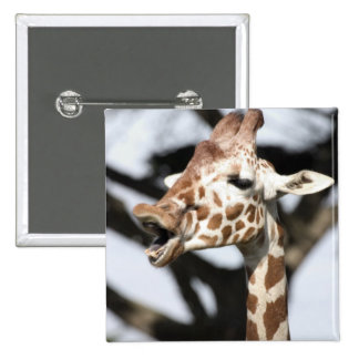 Funny faced reticulated giraffe, San Francisco Pinback Button