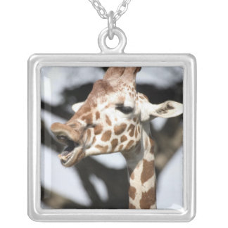 Funny faced reticulated giraffe, San Francisco Silver Plated Necklace