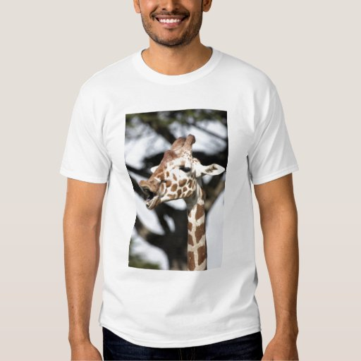 Funny faced reticulated giraffe, San Francisco Tshirt