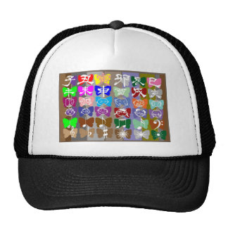 Funny Faces,  Chinese Characters and Sparkles Mesh Hats