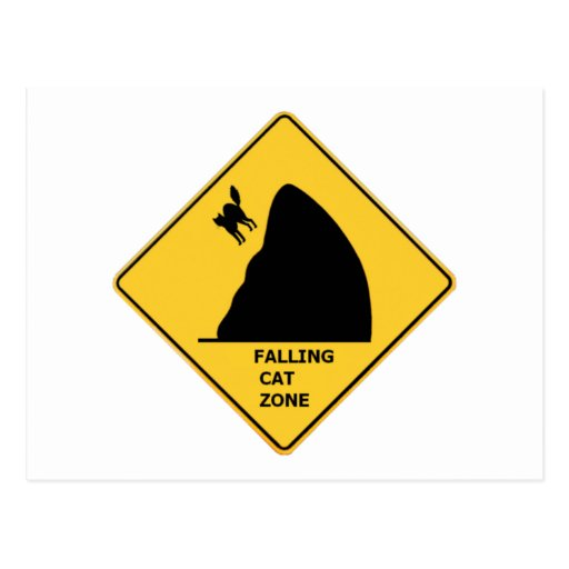 Funny Falling Cat Zone Sign Post Card