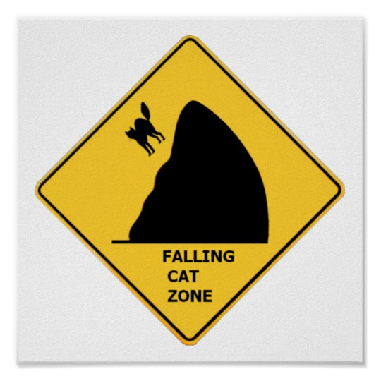Funny Falling Cat Zone Sign Poster