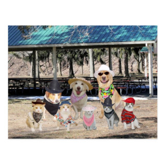 Funny Family Reunion Post Cards