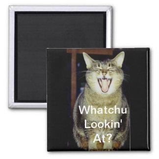 Funny Fat Cat Magnet