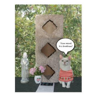 Funny Female Cat New Address Townhouse Postcard