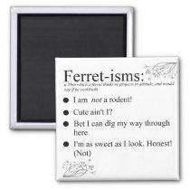 Funny Ferret Gifts Magnet