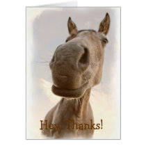 Funny Friendly Horse Thank You Card