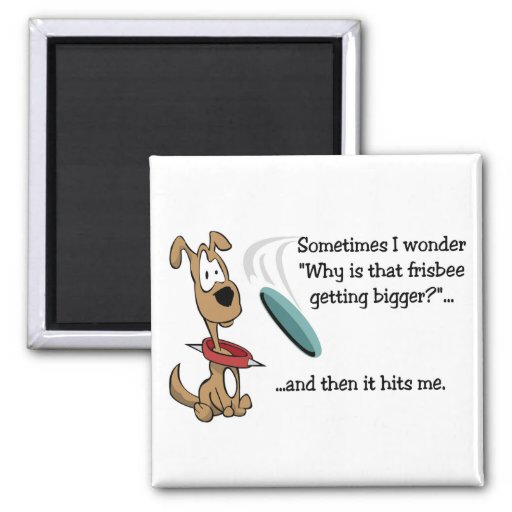 Funny Frisbee magnet