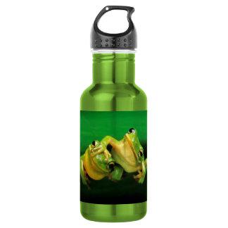Funny Frogs 18oz Water Bottle