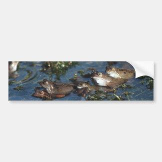 Funny frogs bumper sticker