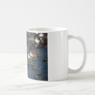 Funny frogs coffee mug