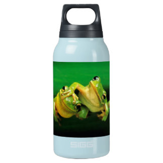 Funny Frogs Insulated Water Bottle